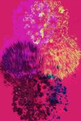 Fleurs d'Artifice - Greeting Card